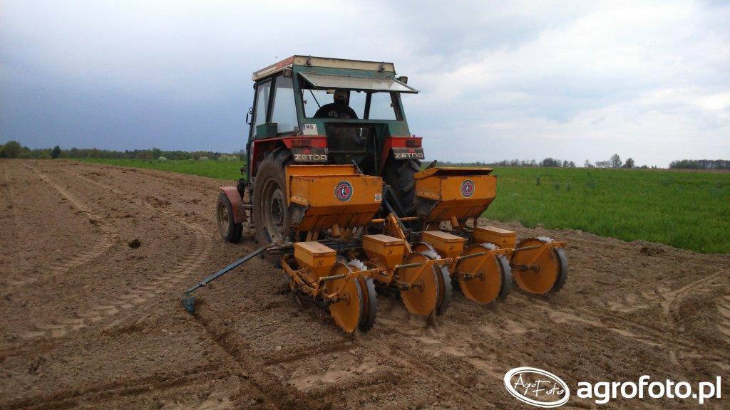 Zetor 7011 + siewnik do kukurydzy