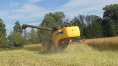 New Holland cx5080 & Żniwa