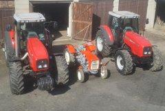 Massey Ferguson 8260 & 8220 & Ursus C-325