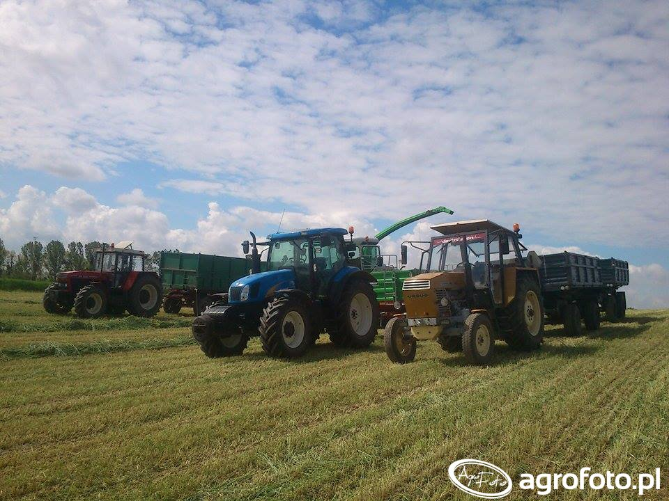 New holland t6030 & ursus 902 & zts 16245