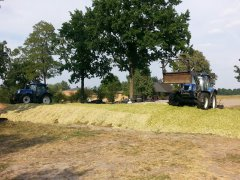 New Holland T6010 & T6030