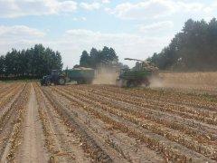New Holland TD5020 & T6030 & TF58