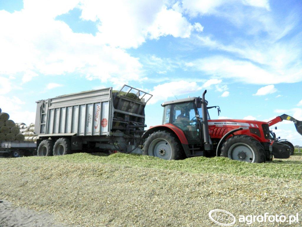 Massey Ferguson 5465 & Fliegl gigant ASW 258