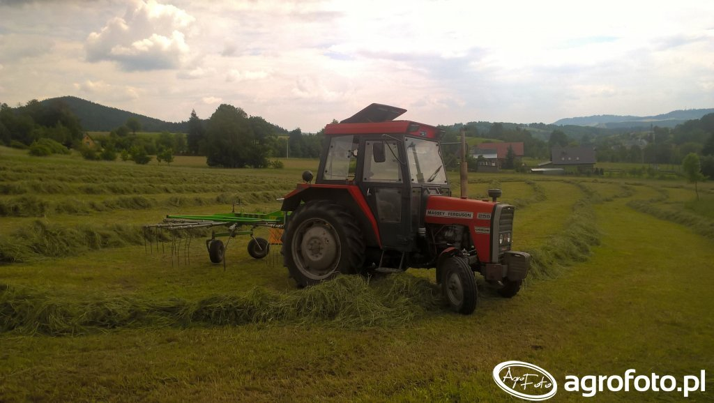 Massey Ferguson 255 & Inter-Tech ZKT-350