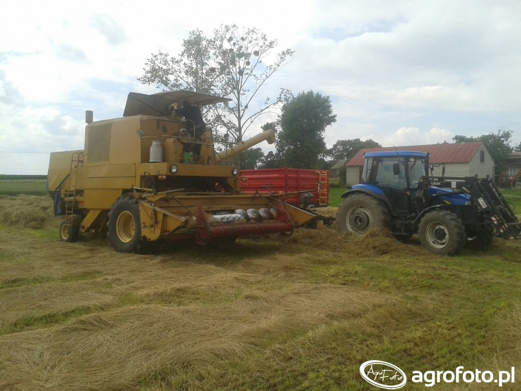 bizon i newholland