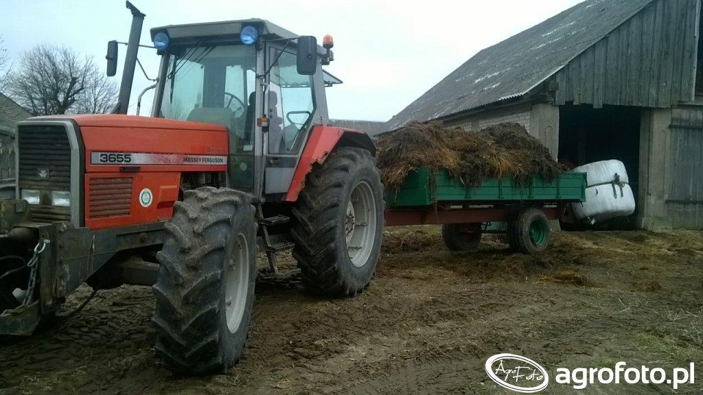 Massey Ferguson 3655 \u0026 Vest Farm 6t odrestaurowany