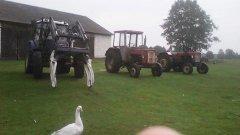 Farmtrac 685dt Ursus c360 i c330M