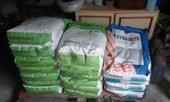 Materiał siewny kukurydzy