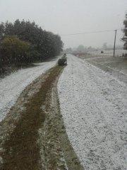 Siano na śniegu