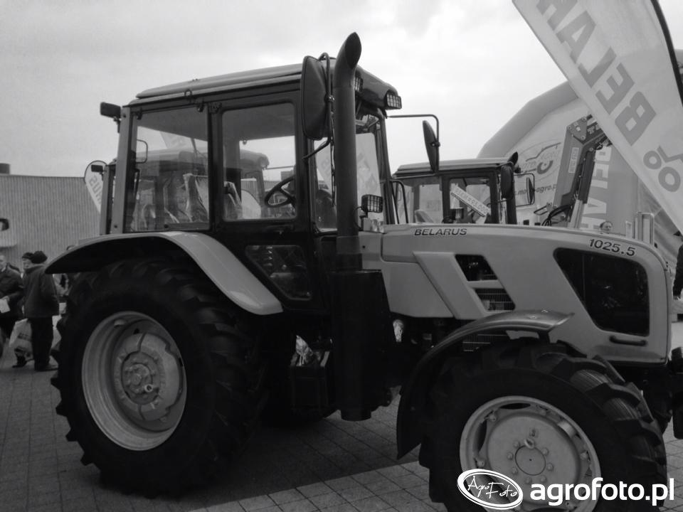 Targi AgroTech Kielce 2015 (151).jpg
