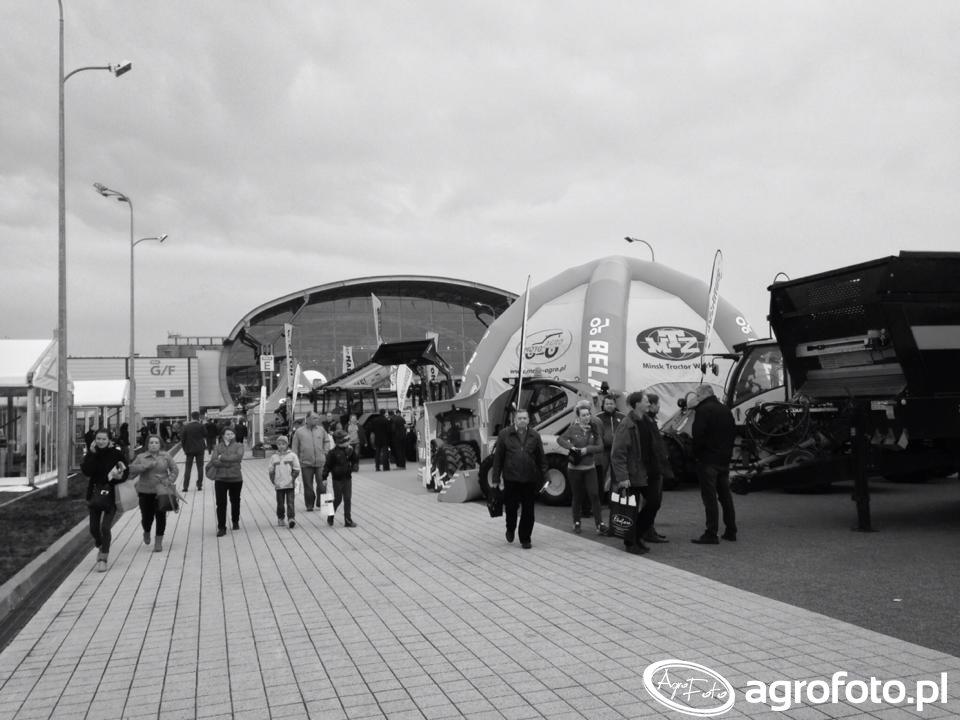 Targi AgroTech Kielce 2015 (43).jpg
