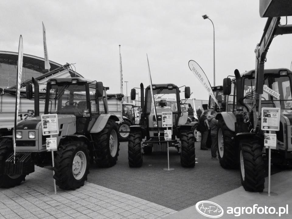 Targi AgroTech Kielce 2015 (44).jpg