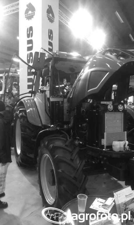 Targi AgroTech Kielce 2015 (529)