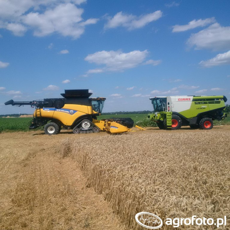 CR vs. Lexion