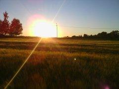 Zachód słońca 2015
