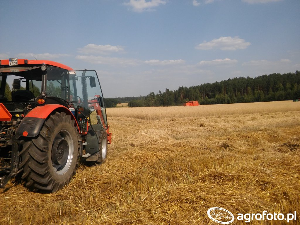 Zetor Proxima Plus 90 i Bizon Super Z056