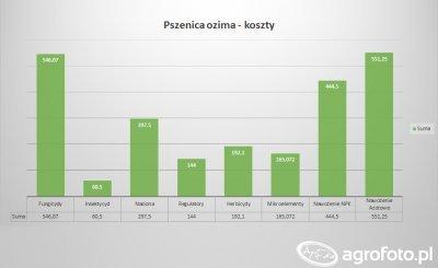 Pszenica Ozima 2017 - koszty