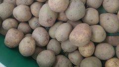 Ziemniaki z Biedronki