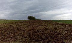 Likwidacja łąki