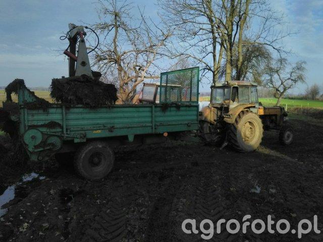 Ursus C-360 & Rorzutnik Agromet 3,5t