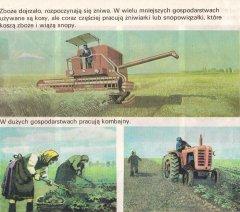 Bizon Z050 i kopanie ziemniaków