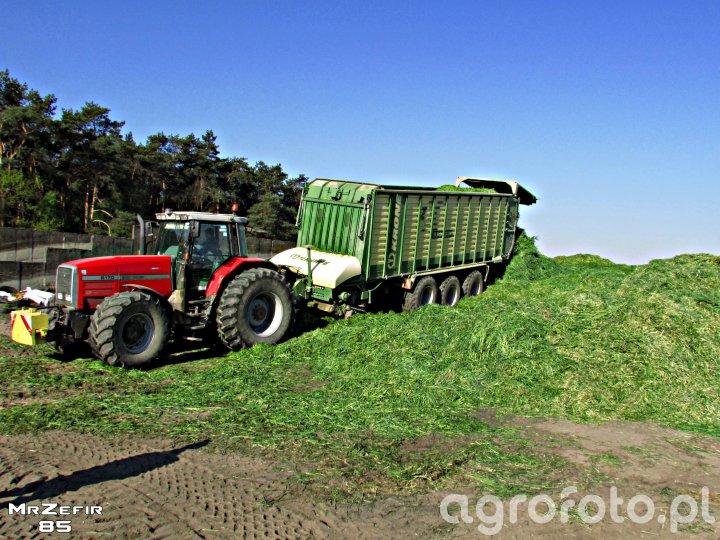 Massey Ferguson 8170&Krone ZX550 GD
