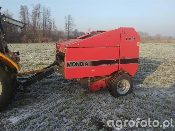 Mondia L120