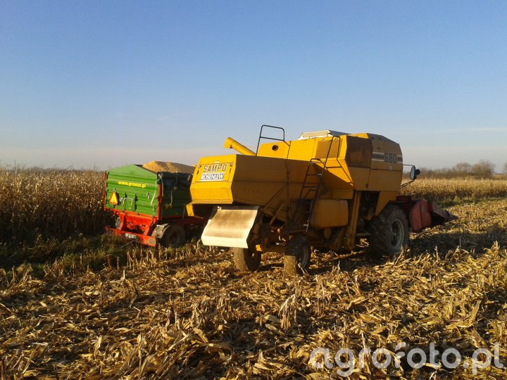 Kombajn Sampo 680 + corn head Massey Ferguson 33