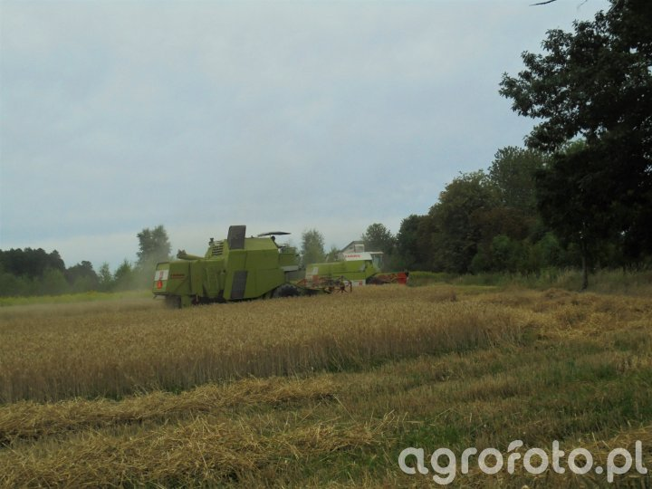 CLAAS Mercator 50 & Dominator 86