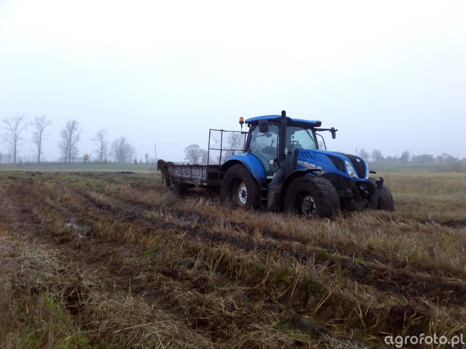New Holland T6.145 + Belarus 4t
