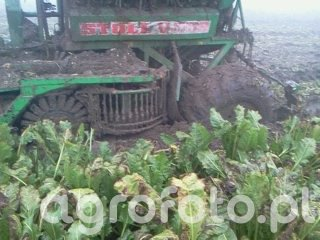 Maszyny do uprawy i zbioru roślin okopowych i warzyw