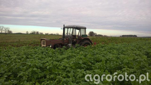 Ursus C-355 + Agro-Factory