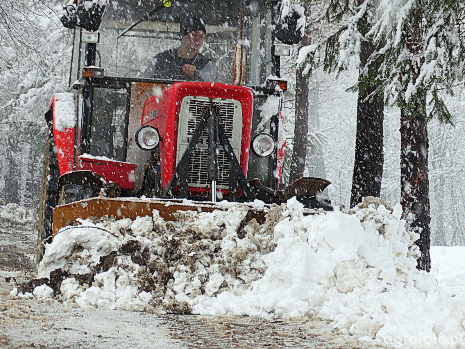 Młodzieńczy Fotografia ciągnik Ursus C-360 & Pług do śniegu #714243 - Galeria FB01