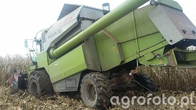 Claas MEDION 310 + DOMINONI
