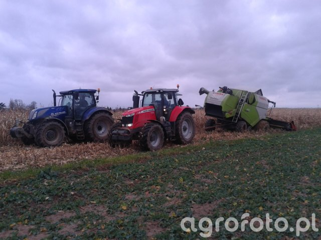 Claas Tucano 450 + Massey Ferguson 7722 + New Holland t7.270
