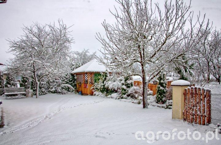 Podwórko zimą