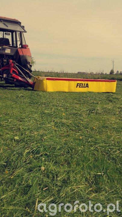 Fella sm288
