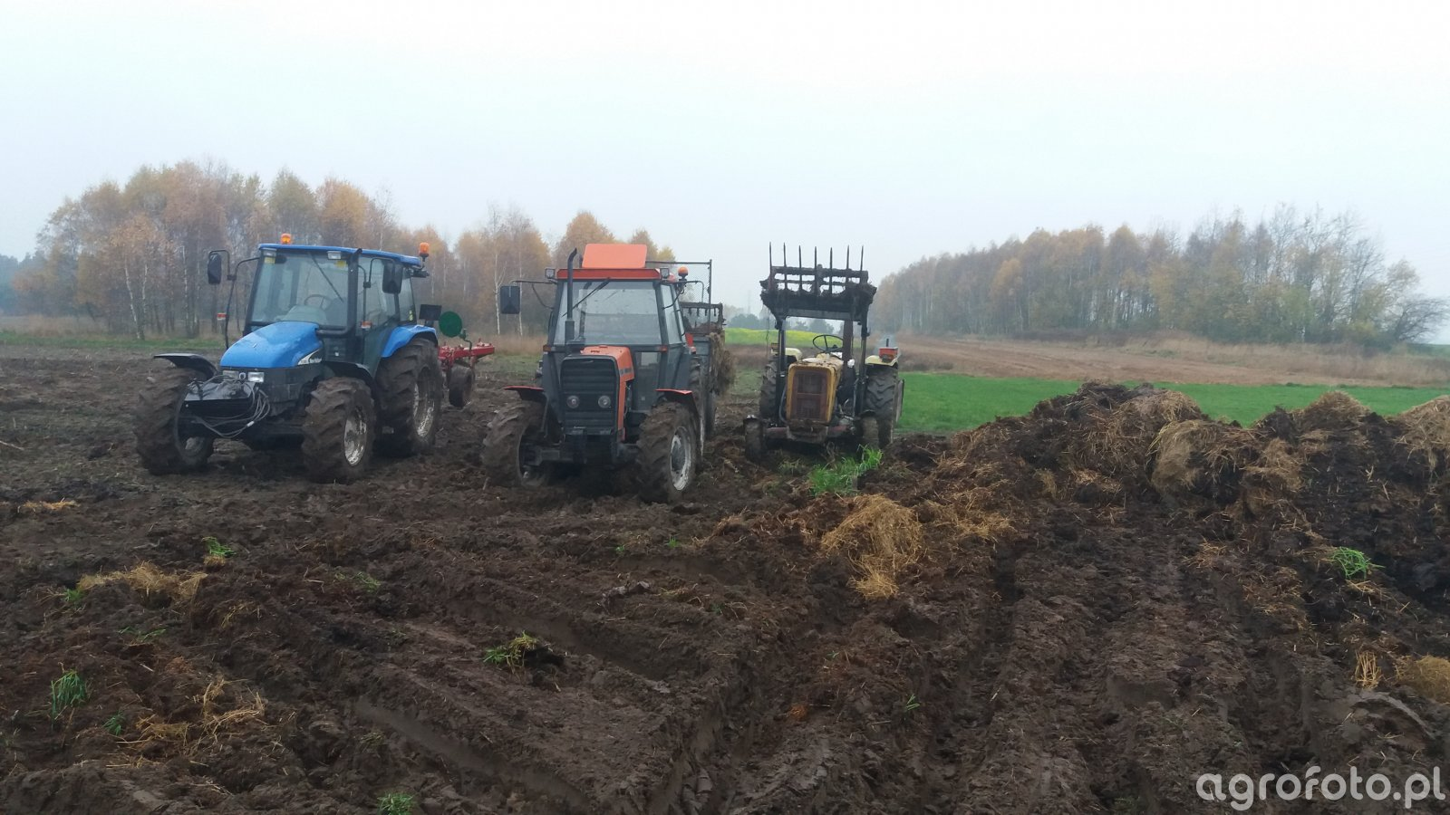 Ursus 5314 + Ursus C-360 3P + New Holland TL100
