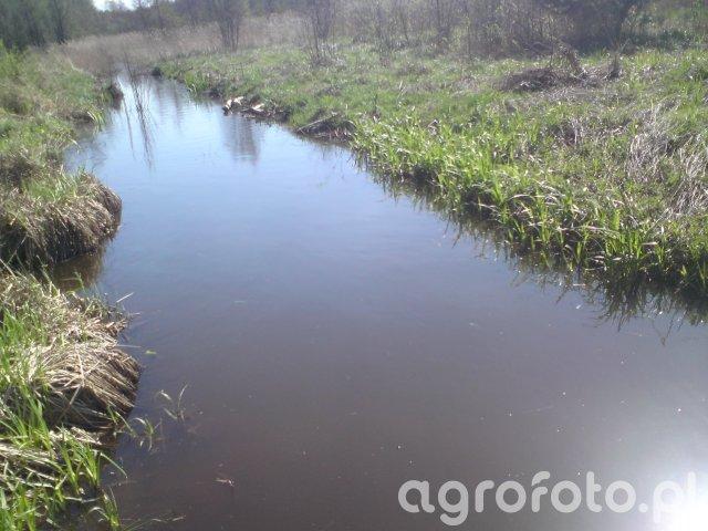 Tama i rów wody 2016