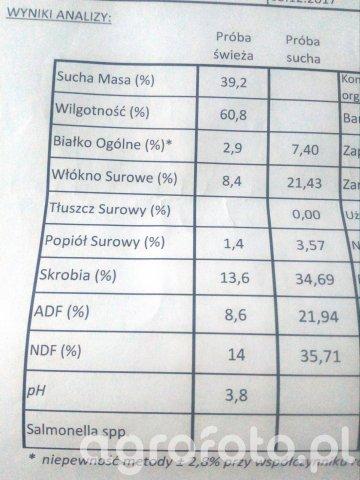 Wyniki analizy kiszonki z kukurydzy