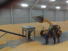 Maszyny i urządzenia do transportu i przechowywania zbóż