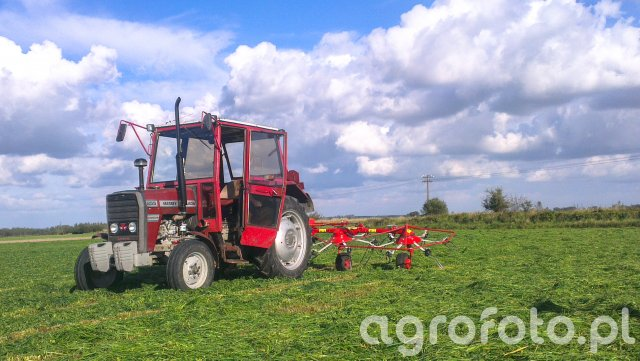 MF 255 + pottinger
