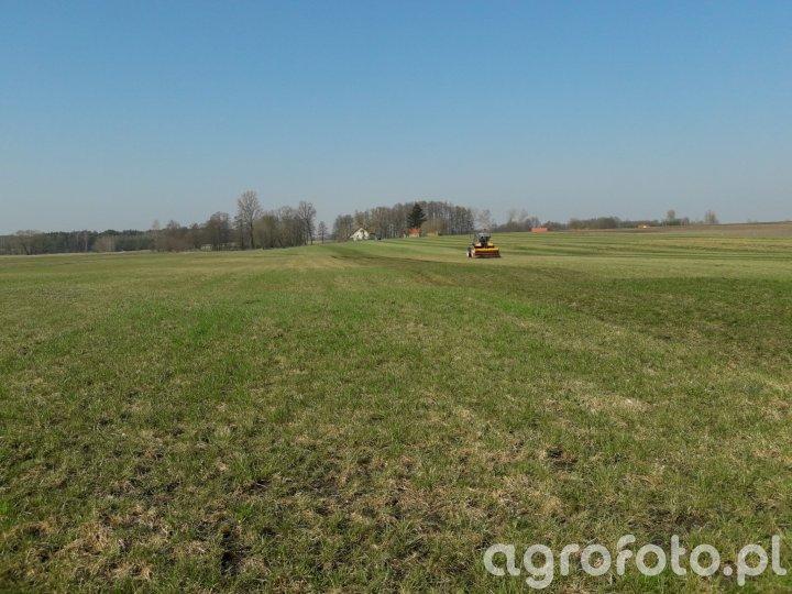 Podsiew trawy