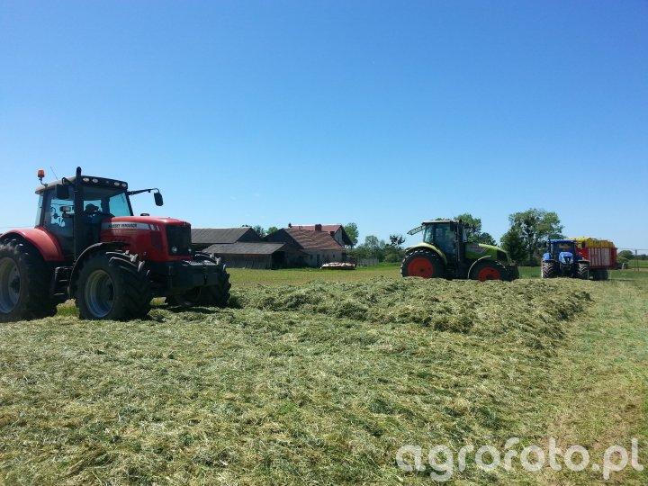 Massey Ferguson, Claas Arion, New Holland