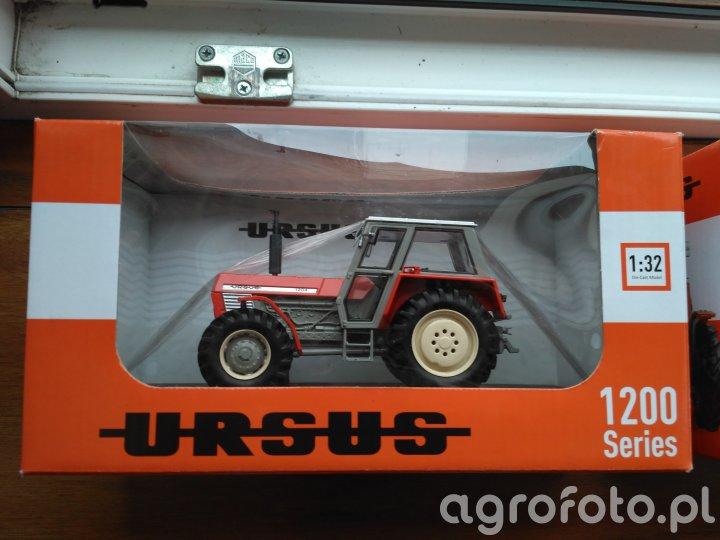 Ursus 1204