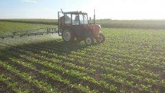 ursus c 328 i agromet Mogilno