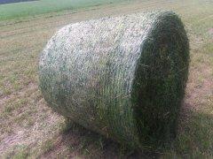 Balot trawy