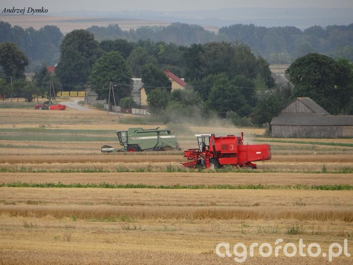 Fendt & Bizon