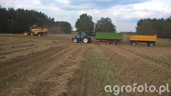 New Holland CX 5080 + T6.155