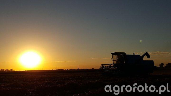 Kombajn Bizon - o zachodzie słońca.